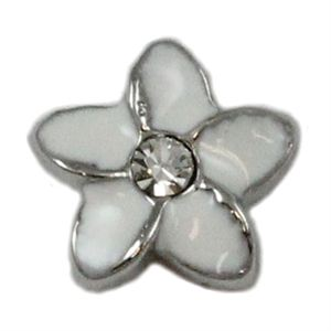 Picture of Plumeria Charm